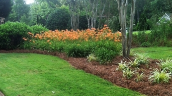 Lawn & Garden Maintenance