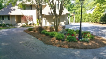Plant Bed Clean-up & Mulch