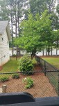 Side Yard Mulch, Trees, Plants & Sod