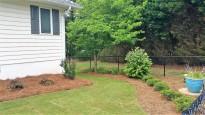 Side Yard, Trees, Plants & Sod