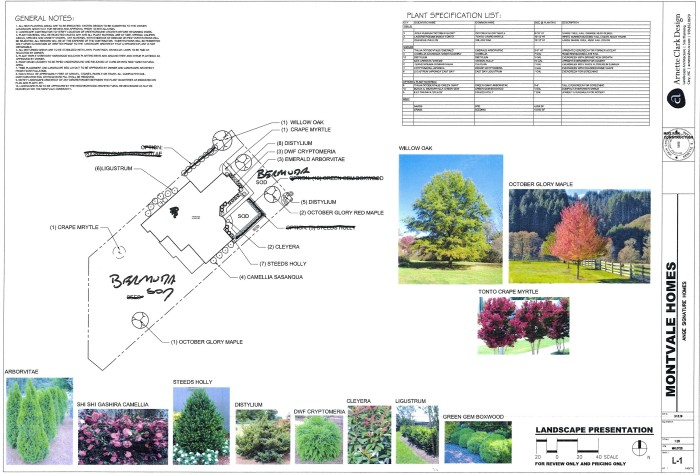 Montvale Revised plan hand marked 3 25 19